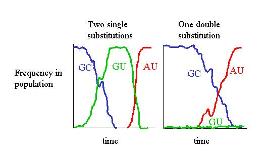 theory of compensatory substitutions